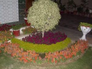 Decoration  ideas for garden