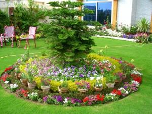 floral arrangements of small garden