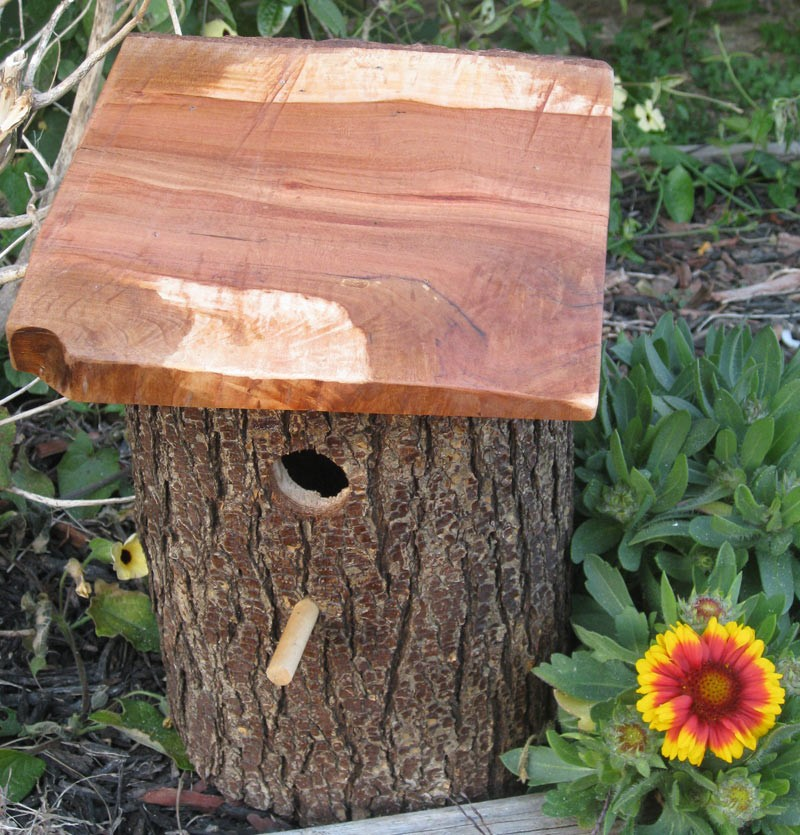 Diy Decorative Birdhouses Ideas. Queen Anne Living Room Furniture. Living Rooms With Sectionals. Dining Room Chandelier Ideas. Rooms For Rent Jacksonville Fl. Custom Cabinets For Living Room. Decorative Dish Soap Dispenser. French Themed Kitchen Decor. Furnished Room For Rent