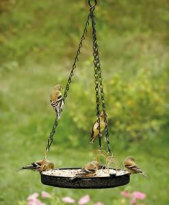 Hanging DIY bird feeders