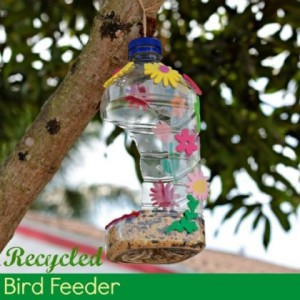 Kids DIY bird feeders