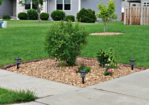 Landscaping ideas driveways