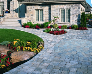 Modern driveway landscaping