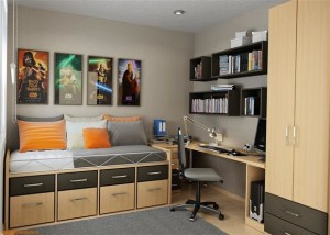 Small apartments storage solutions