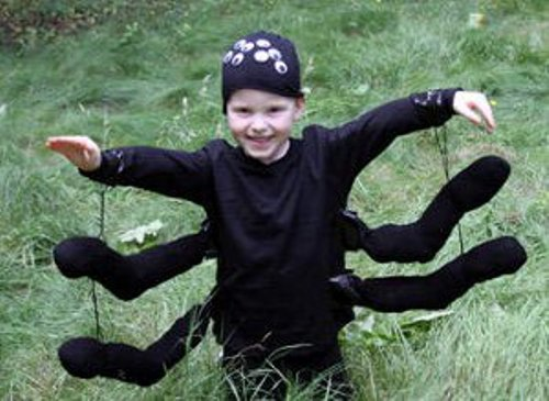 Homemade Spider Costume