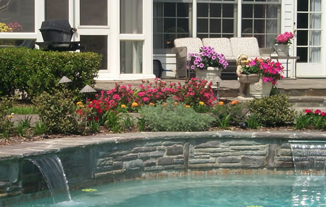 Modern pool landscaping ideas with rocks and plants Best plants for swimming pool landscaping
