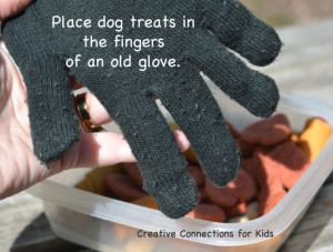 Easy dog toys ideas