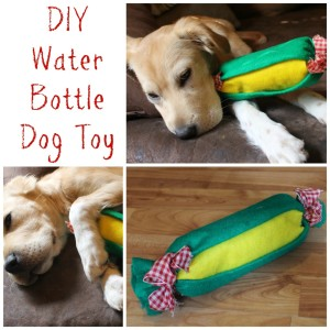 Upcycled dog toys DIY