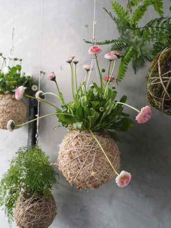 DIY Garden basket Ideas 2015